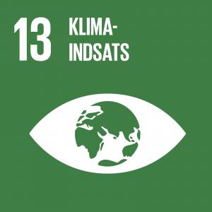 FN mål 13